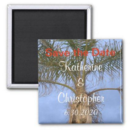 Save the Date Palm Tree Blue Sky Wedding Magnets