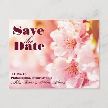 Save the Date Pink Floral Cards