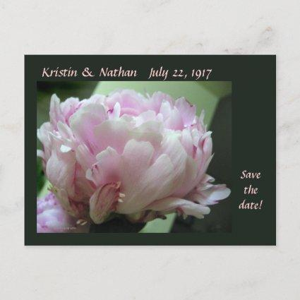 Save the Date Pink Peony Wedding