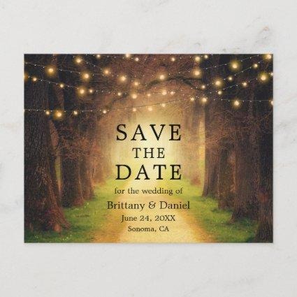 Save The Date Rustic Forest Path String Lights Announcement