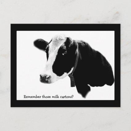 Save the Date - School Reunion with a Cow Announcement