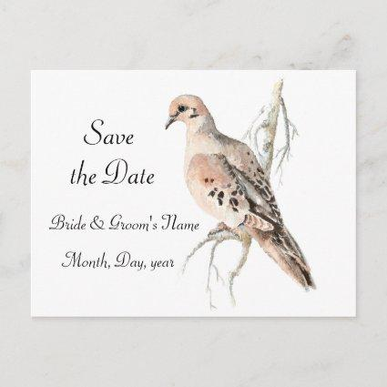Save the Date, Turtle Dove, Bird Wedding Announcements