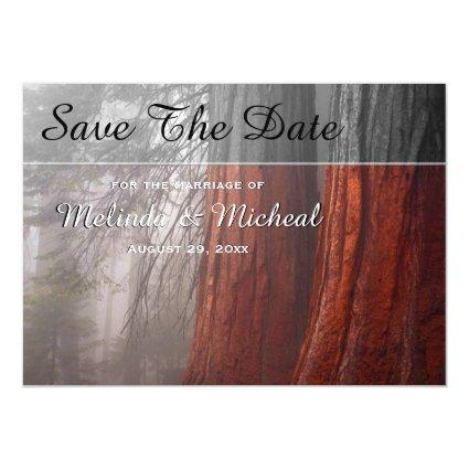 Sequoia Trees In Fog Country Wedding Save The Date Magnetic Invitation