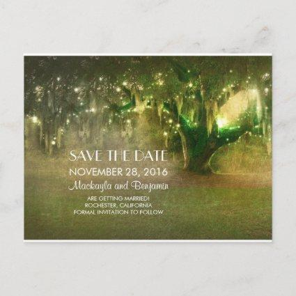 string lights oak tree rustic save the date announcement