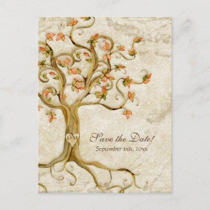Swirl Tree Roots Antiqued Parchment Wedding Save Announcement