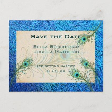 Teal Peacock Feathers Save the Date Wedding pos Announcement