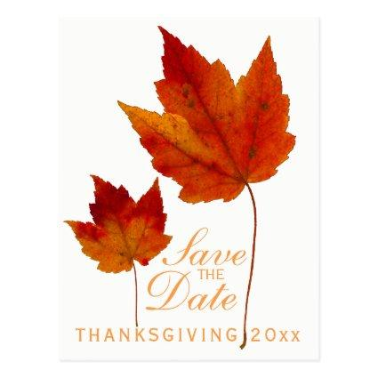 Thanksgiving Save the Date Maple Leaf