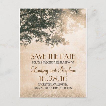 tree and love birds rustic vintage save the date announcement
