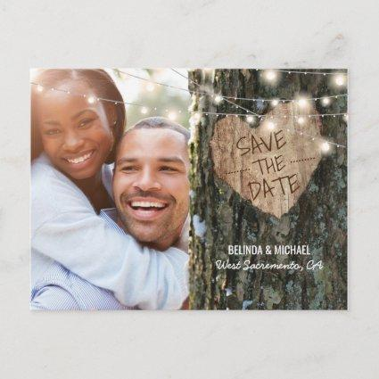 Tree Wedding Save the Date | Rustic String Lights Announcement