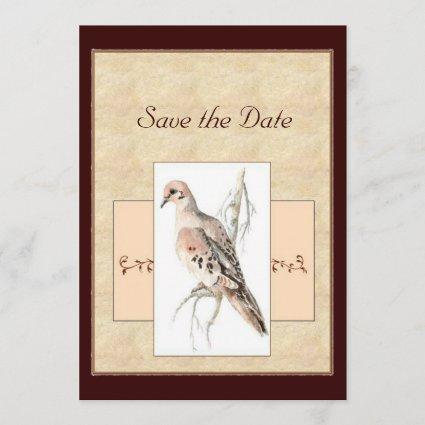 Turtle Dove, Pink, Brown, Vanilla,Save the Date Save The Date
