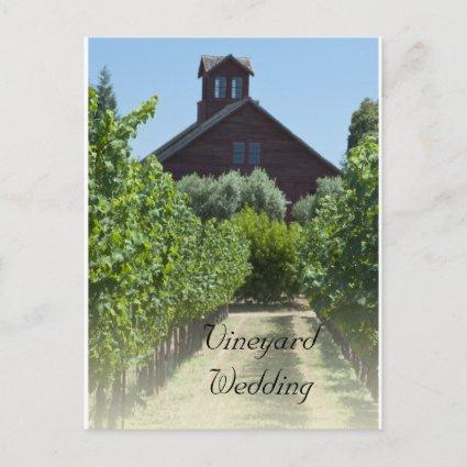 Vineyard and Rustic Barn Wedding Save the Date Announcement