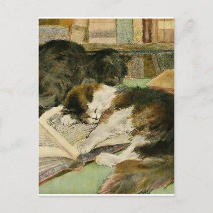 Vintage Contented Sleepy Fluffy Cats Announcement