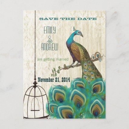 Vintage Damask Peacock Birdcage Save the Date Announcement