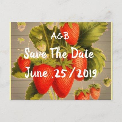Vintage  Strawberry  Orchard Announcement
