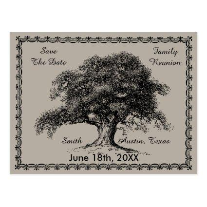 Vintage Tree Outdoor Rustic Family Reunion Cards