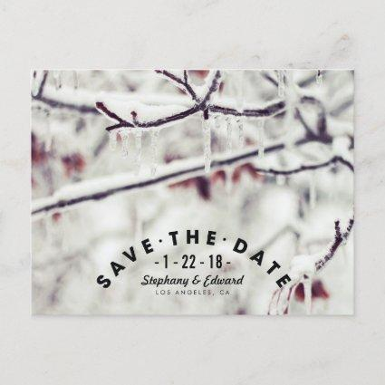 Winter Branches Stylish Save the Date Cards