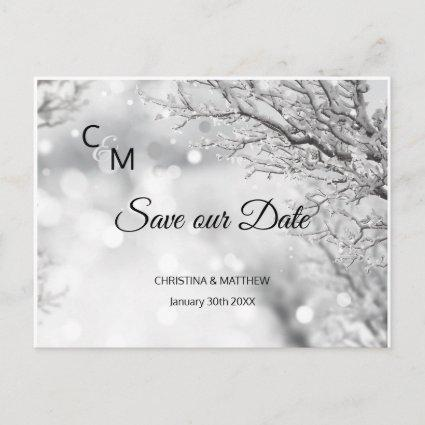 Winter Snow Snowflakes Wedding SAVE OUR DATE Announcement