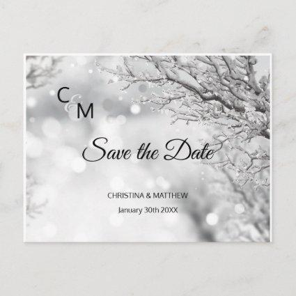 Winter Snow Snowflakes Wedding SAVE THE DATE Announcement