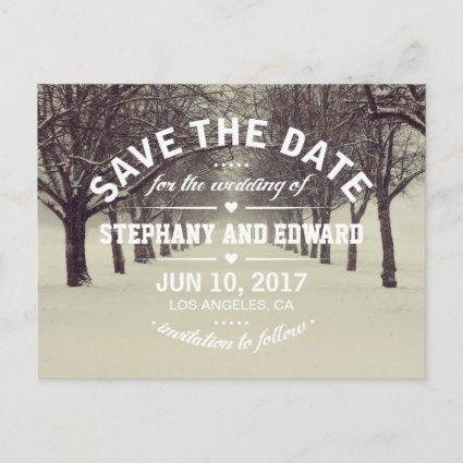 Winter Trees Avenue Stylish Save the Date Cards
