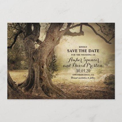 Woodland Tree Wedding Save The Date